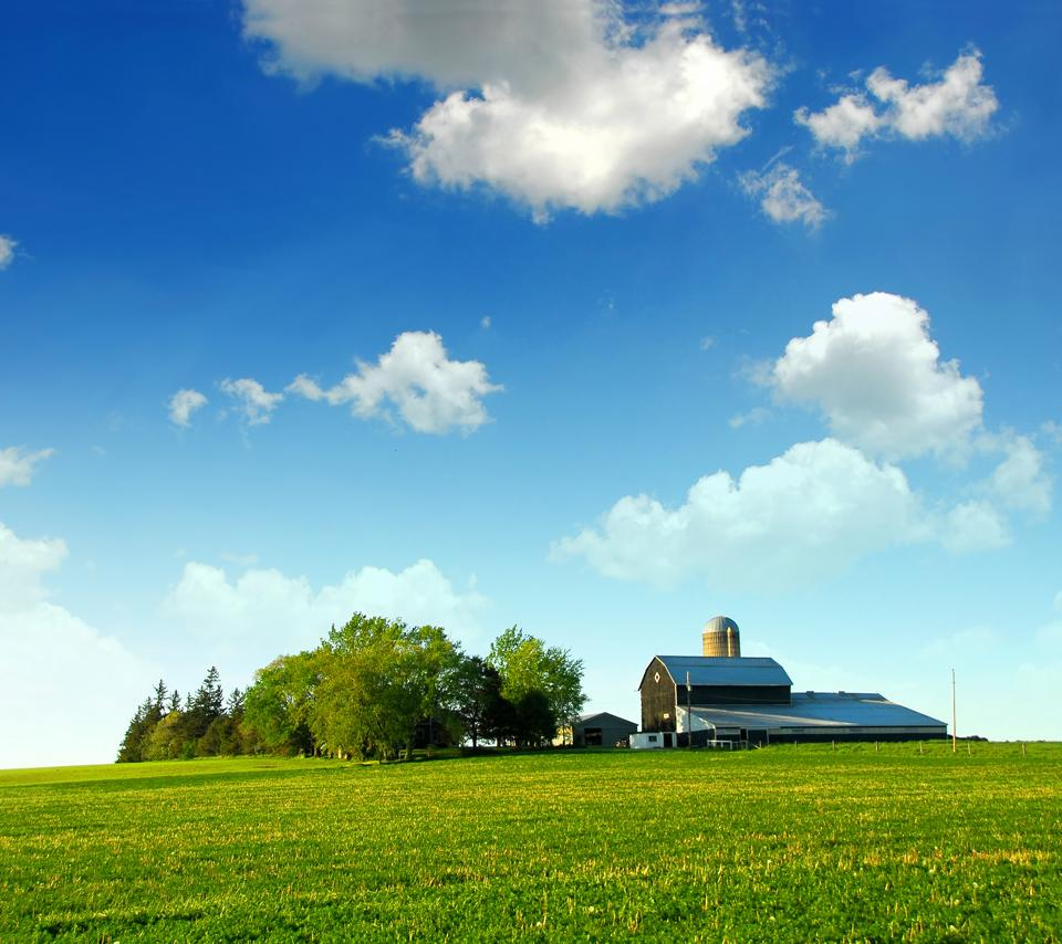 Field-small-house-android-wallpaper-free