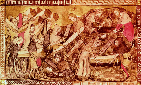 Black Death was a terrible period in Irish History